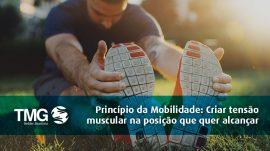 artigo-princípio-mobilidade
